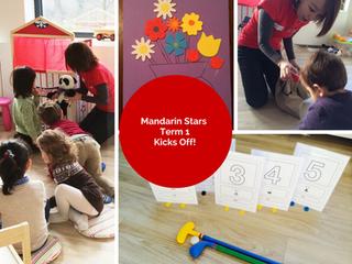 Mandarin Stars Term 1 Kicks Off!