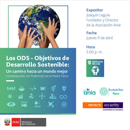 Los ODS: Un camino hacia un mundo mejor