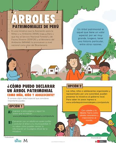 infografia niños arboles_2-01.png