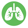 NQ_Website_Icons_Lungs.png