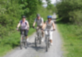 Recreational cyclists on the Mawddach Trail