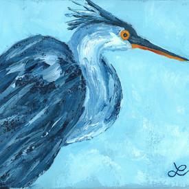 blue egret RTP 001.jpg