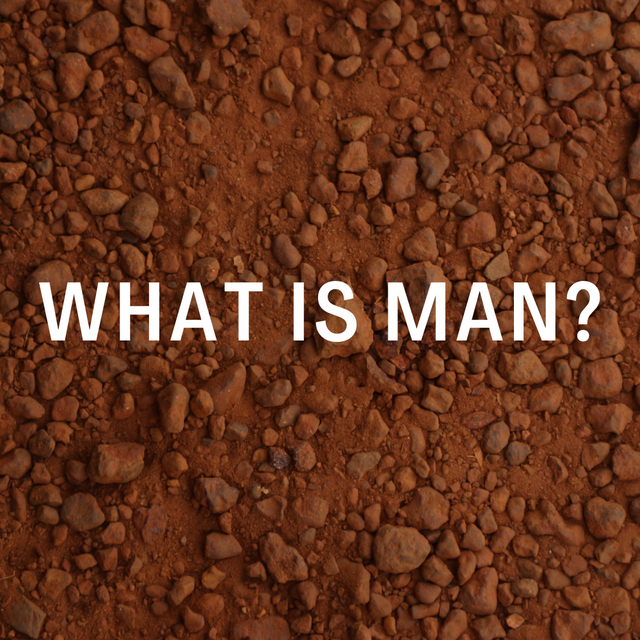 Copy of What is Man_ - Website 2.png