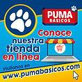 PUMA_BASICOS_paraweb_01.jpg