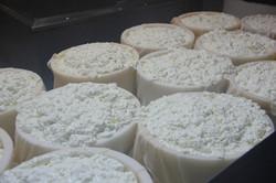 fabrication du fromage de bergues