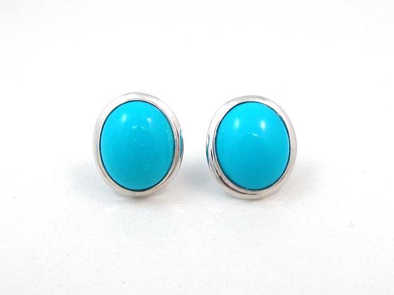 14kt White Gold Turqoise Earrings