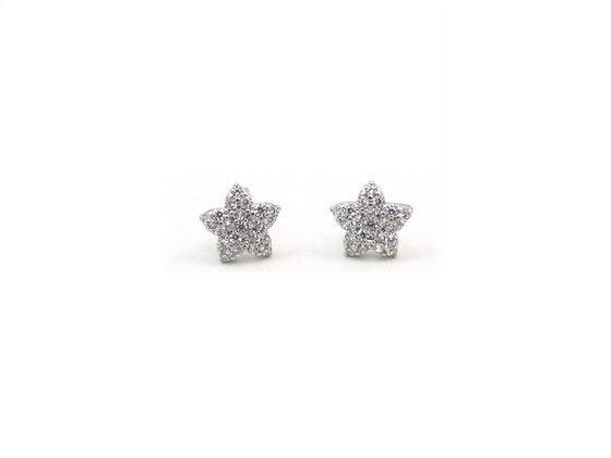 10kt White Gold Star Stud Earrings