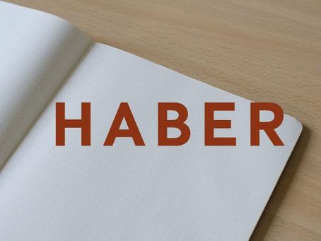 Глагол-хамелеон (HABER)