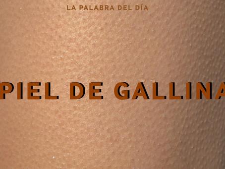 PIEL DE GALLINA