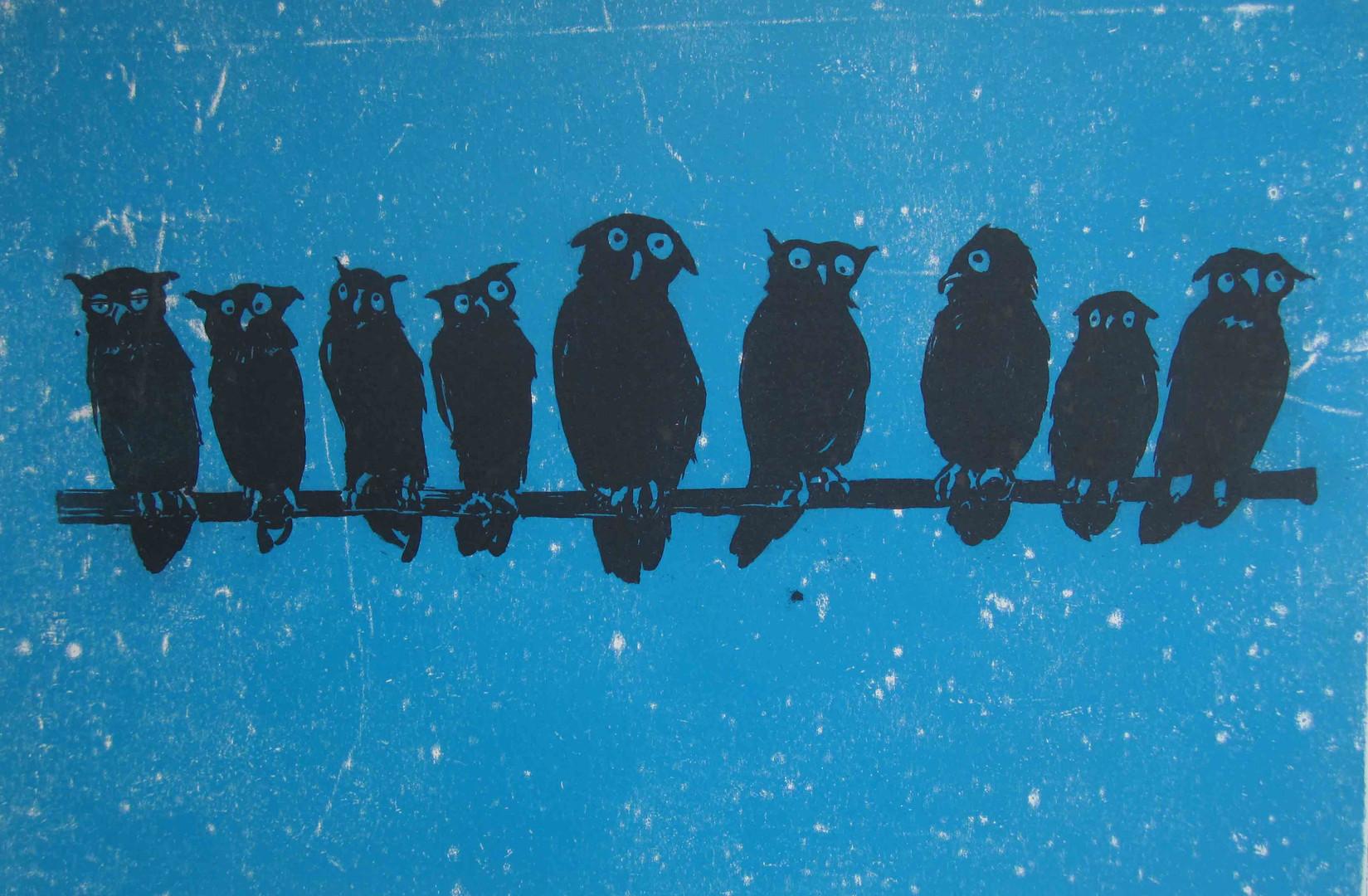 'Toowit Twoo', sugar lift printed onto blue paper,  30 x 43 cm