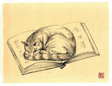 'Cat Scholar'