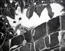 'Cat Guardian, Eyes Watching You'