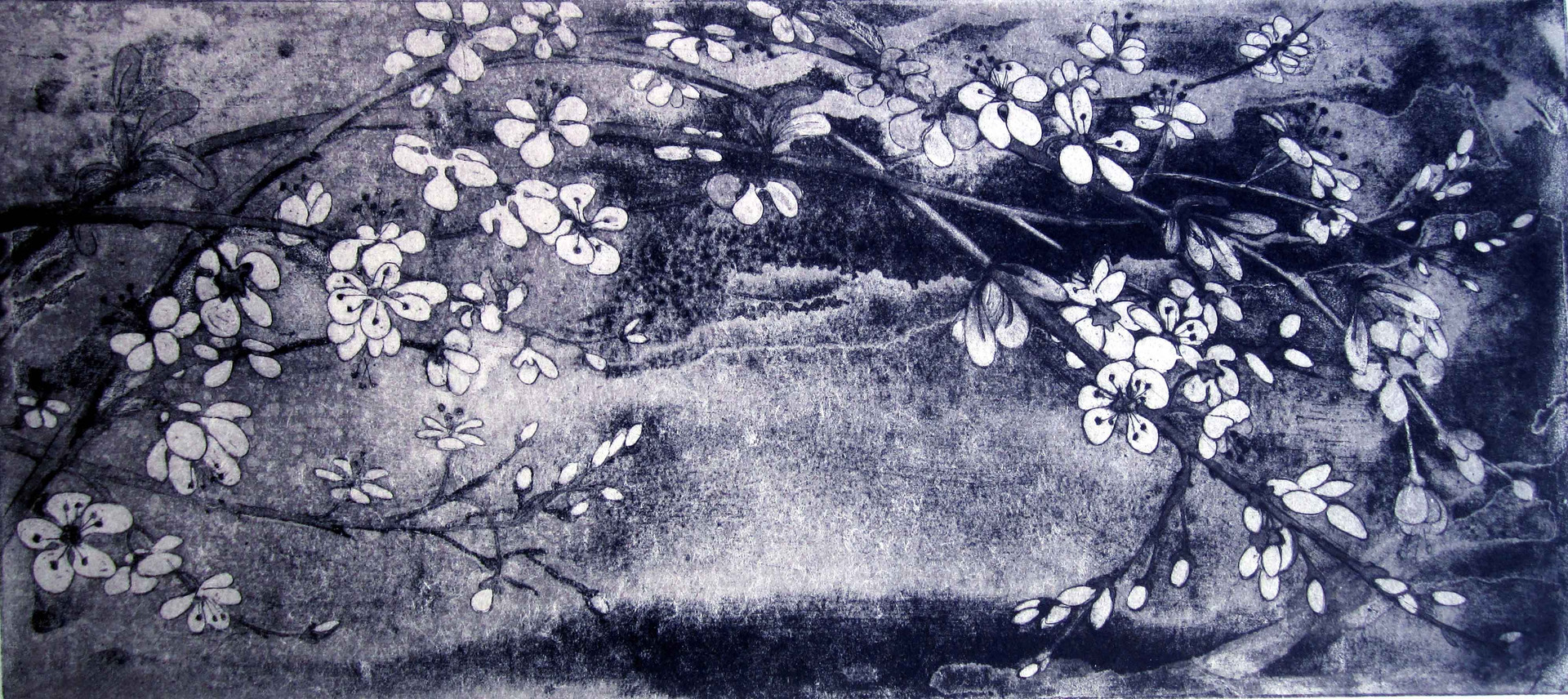 'Spring Blossoms'