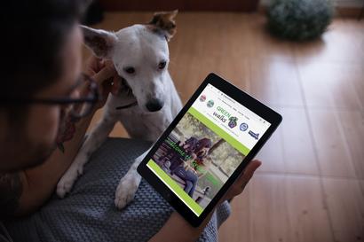 Green Walks Pet Services