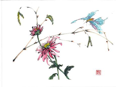 'Butterflies Dream'