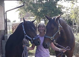 Michelle and Horses