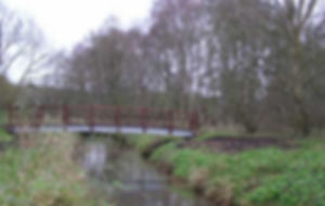 Blo Norton Fen footbridge.jpg