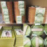 Plastic Free Pots