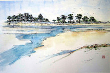 'Wells-next-the-Sea'