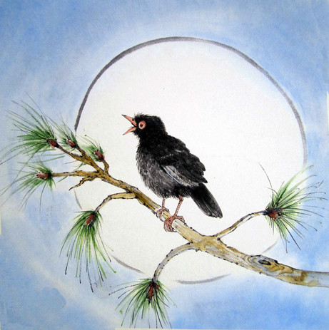 'Winter Warbler'