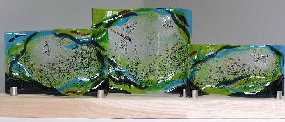Spring Meadow Dragonflies