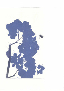 'Hydrangea and Bee'