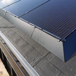 Solar panel pigeon protection