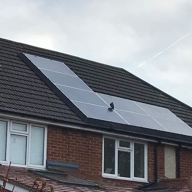 """Customer review - """"We were plagued by a group of about 9 pigeons nesting under our solar panels, causing blocked gutters and pipes and a general mess, as well as being a noise nuisance at 4 am! Since the fitting of the SolaSkirt, this problem has been completely solved and we now get a good night's sleep! We are really pleased with the result and it also looks good. The SolaSkirt is aesthetically pleasing and has smartened up our panels."""""""