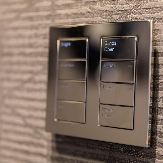 Lutron Palladium switches