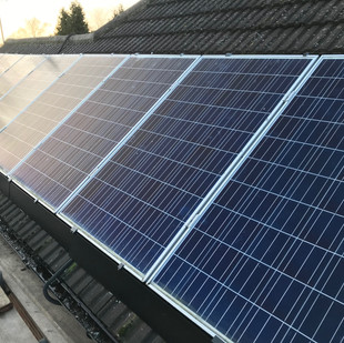 Protect solar panels from pigeons