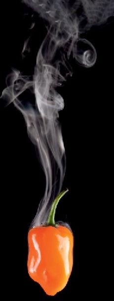 habanero steaming.jpg