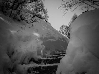 ふたたび雪