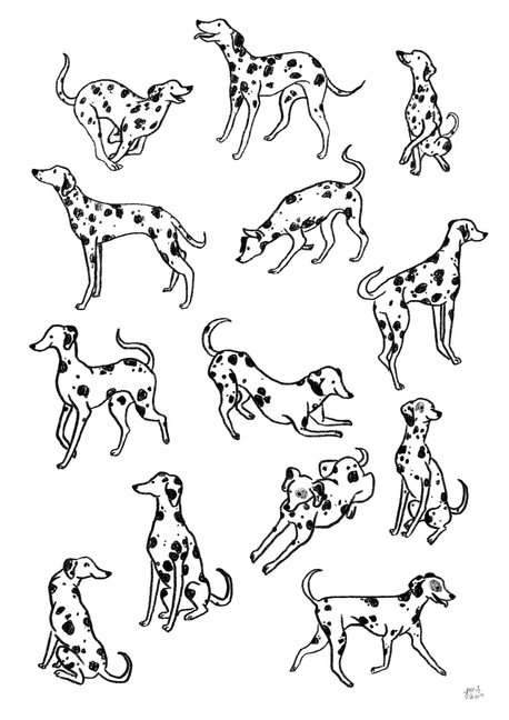 A4 Dalmation Print