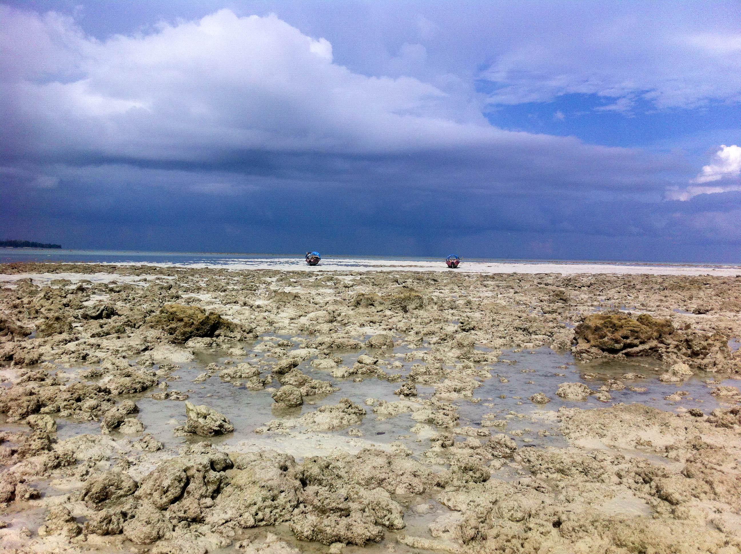 Beach n. 5, Havelock Island
