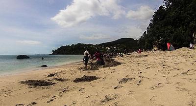 Hot Water Beach Novy Zeland