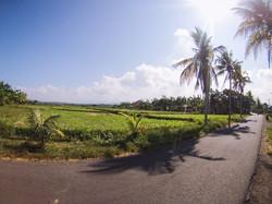 Indonesia Bali Lombok Java Gilis