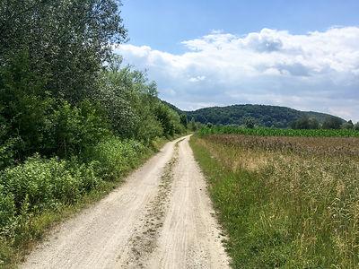 Backpacking.cz: EV6 - prašná cesta u Herrnsaal
