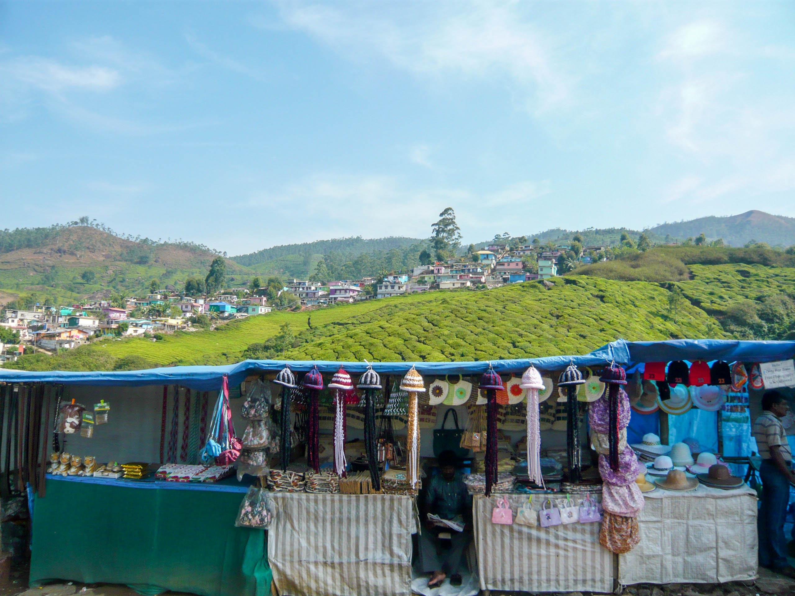 Munnar, Kerala