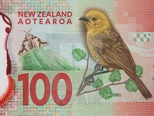 New Zealand Working Holidays - Income tax return tutorial