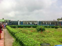 Parní vláček, Darjeeling