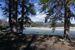 National Park Jasper