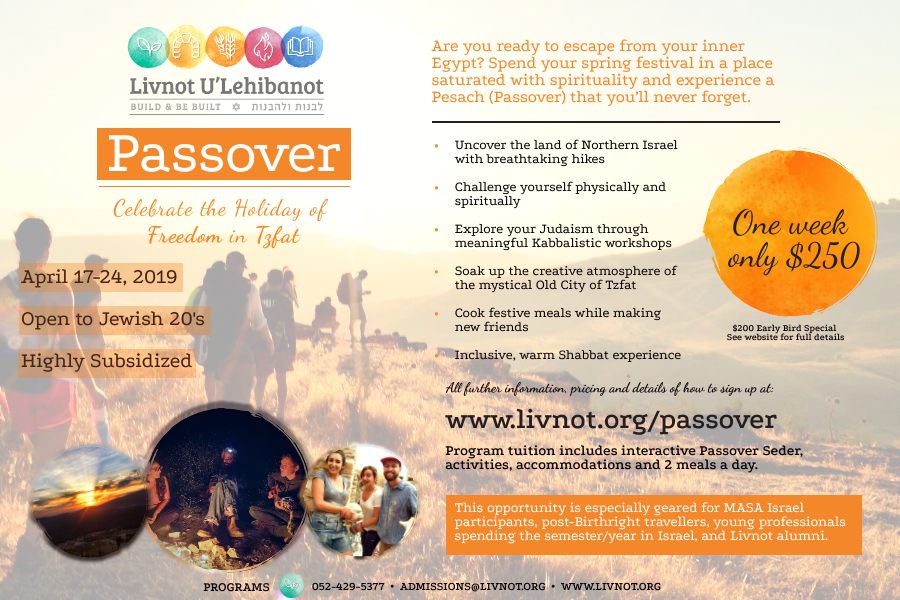 Pesach Web Flyer