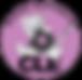 cropped-RoarReportsCLE_logo1_web-1.png
