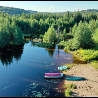 Trees water boats sand.JPG