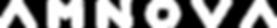AMNOVA LOGO JAN-2020 TEXT WHITE.png