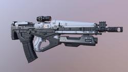 Rifle Destiny Assault