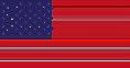 American flag crop.png