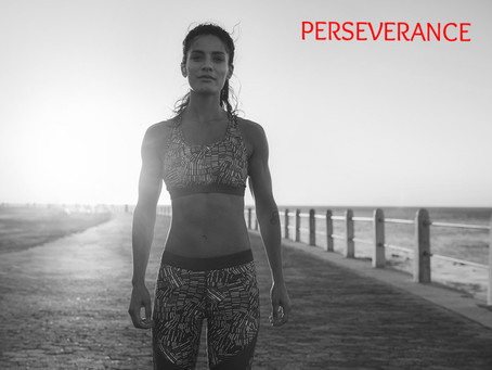 Perseverance Pays Dividends