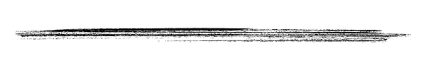 Blank 8 x 4 in (1).png