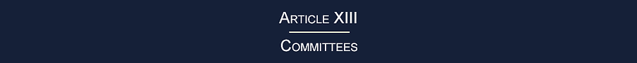 _BANNER_ Article XIII.png